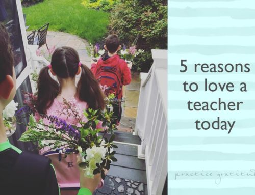 5 Reasons to LOVE a Teacher Today, September Survival