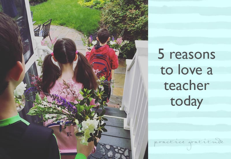 5 Reasons to Love a Teacher Today